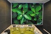 Декорирование стекла - матирование, покраска, фотопечать, триплекс с декоративными вставками