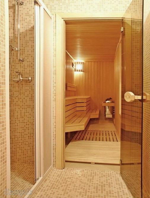 Model SN-01. Glass door for sauna and bath made of bronze transparent glass