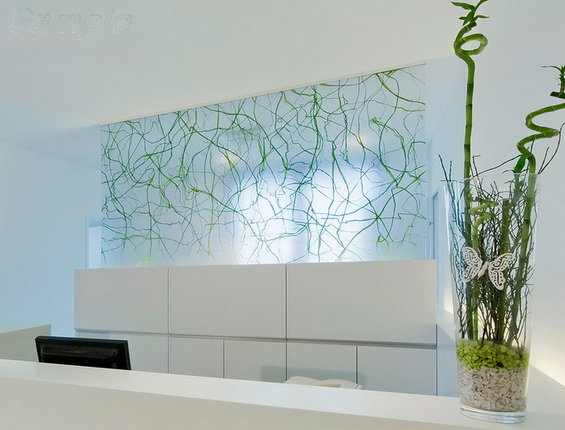 Glass partition in an elegant hallway of a beauty salon