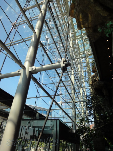 Cable spider glazing system