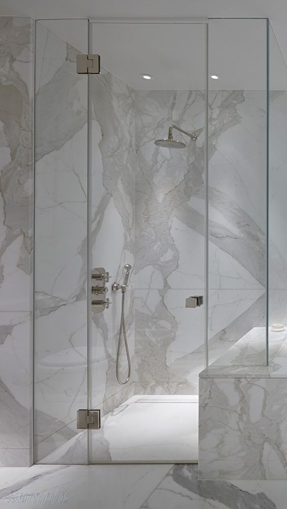 Model SD-04. Glass hinged shower door between two fixated elements